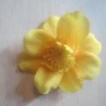 gul-lille