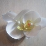 hvid-lille