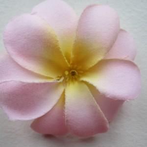 Babylyserød blomst