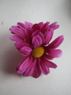 Dobbeltblomst i lilla
